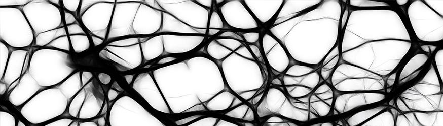 neurociencia-gesprodat